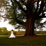 Bride: Nichole