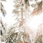 Grouse Mountain Engagement Photos